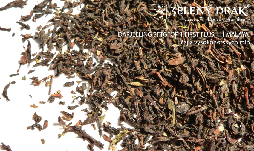 DARJEELING SFTGFOP 1 FIRST FLUSH HIMALAYA – čaj z vysokohorských mlh